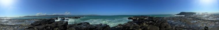 Curio Bay (1).jpg